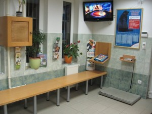 Kutyák, macskák, nyulak oltása, gyógyítása kellemes környezetben a Budafoki Állatgyógyászati Központban